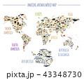 ワールド 世界 地図のイラスト 43348730