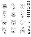 犬種モノクロ縦 43351438