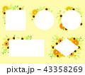 黄色いガーベラのフレーム 43358269