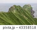 積丹 海岸 北海道の写真 43358518