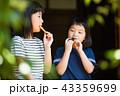 古民家の縁側でおやつを食べる小学生の女の子 43359699