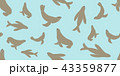 オットセイ シームレス 43359877