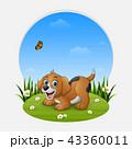 わんこ 犬 動物のイラスト 43360011