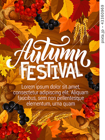 Autumn festival poster. Vector berries in foliage 43360969