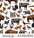 Wild animals sketch seamless pattern background 43360989