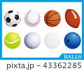 ボール スポーツ 球技のイラスト 43362285