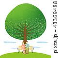 カップル ベンチ 新緑のイラスト 43369488