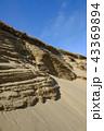 鳥取砂丘 砂丘 山陰海岸ジオパークの写真 43369894