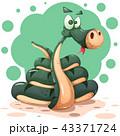 ヘビ 蛇 キャラクターのイラスト 43371724