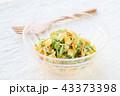 コールスロー 料理 野菜サラダの写真 43373398