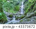 滝 川 自然の写真 43373672