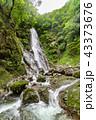滝 川 自然の写真 43373676