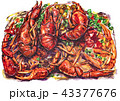 ザリガニ 海老 エビのイラスト 43377676