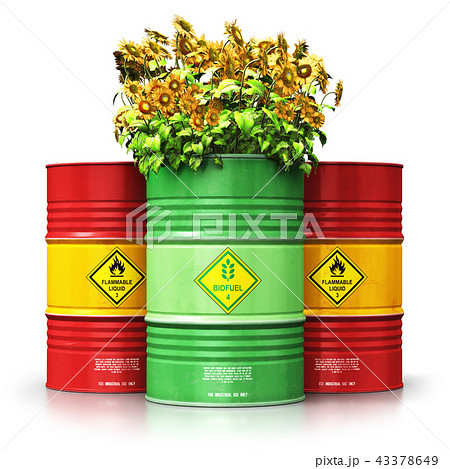 Green biofuel drum with sunflowers in front of red 43378649