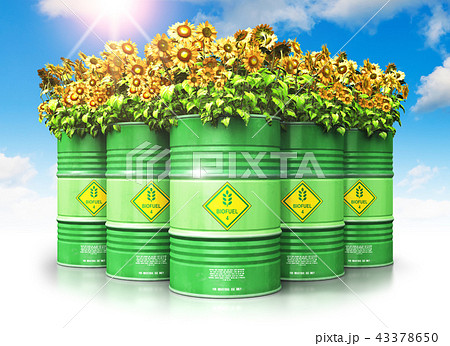 Green biofuel drums with sunflowers against sky 43378650