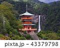 那智の滝 滝 三重塔の写真 43379798