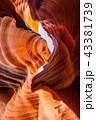 アメリカ 岩 鍾乳洞の写真 43381739