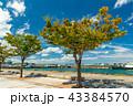 風景 門司港レトロ 晴れの写真 43384570