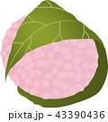 桜餅 道明寺 和菓子のイラスト 43390436