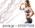 女性 フィットネス ダイエットの写真 43397508