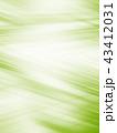グリーンの抽象的なグラフィックテクスチャの 43412031