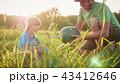 すいか スイカ 西瓜の写真 43412646