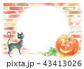 ハロウィン フレーム 黒猫のイラスト 43413026