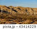 風力発電 風車 発電の写真 43414229