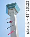 五稜郭タワーと鯉のぼり 43416122