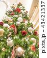 Xmasの雰囲気を盛り上げるクリスマスツリー愛の告白スポット恋人の聖地 43421337