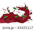 サクランボ チェリー さくらんぼのイラスト 43425117