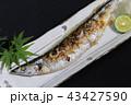 秋の味覚・料理~サンマの塩焼き~ 43427590