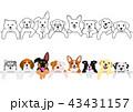かわいい子犬たちのボーダーセット 43431157