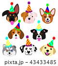 かわいい子犬たちの顔セット パーティーハット 43433485