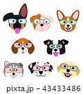 かわいい子犬たちの顔セット 眼鏡 43433486