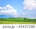 青空 雲 草原の写真 43437280