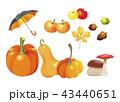 かぼちゃ カボチャ 南瓜のイラスト 43440651