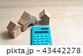 家 マイホーム ミニチュアの写真 43442278