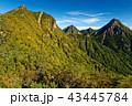 八ヶ岳 秋 権現岳の写真 43445784