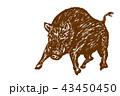 迫力のあるイノシシのイラスト 筆書き 茶色 43450450