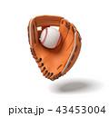 ベースボール 白球 野球のイラスト 43453004