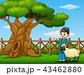 マンガ 漫画 男児のイラスト 43462880