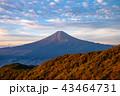 富士山 秋 紅葉の写真 43464731