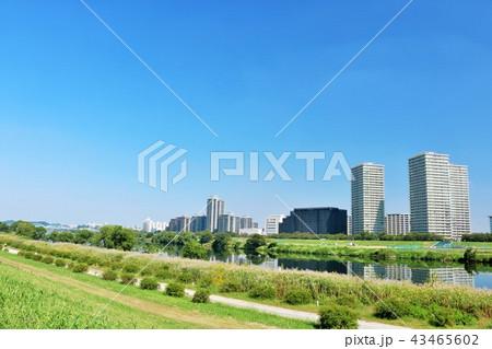青空の街並みと川沿いの風景 43465602