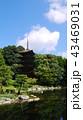 池の改修が終わった新しい池の夏の瑠璃光寺五重塔 43469031