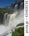 イグアスの滝(アルゼンチン) 43469536