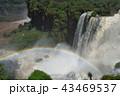 イグアスの滝(アルゼンチン) 43469537
