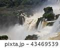 イグアスの滝(アルゼンチン) 43469539