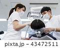 歯医者 患者 歯科医の写真 43472511