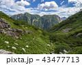 北アルプスの山々 43477713